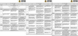 ICCAS programme